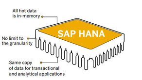 Can I get the full picture of my business in real time with SAP HANA?