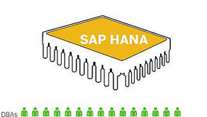 Can I answer all my data discovery questions without adding more DBAs to do data tuning with SAP HAN
