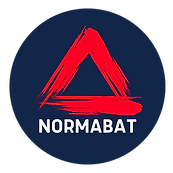 Normabat Brush.png