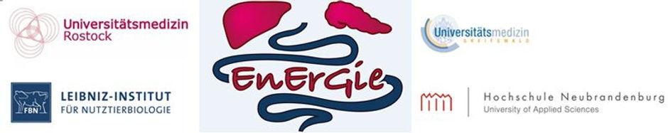 Test 4 Logos + EnErGie Logo.JPG