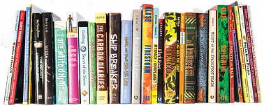 image - books on shelve.png