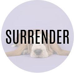 Surrender2.jpg