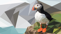 Poly the Puffin