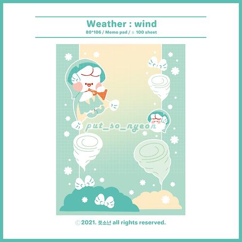 weather : wind (70g)