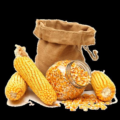 Corn (Unpeeled)