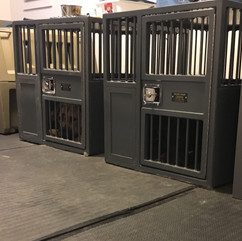 Heavy duty crates for escape artists