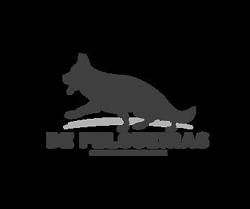 logo_felgueiras.png