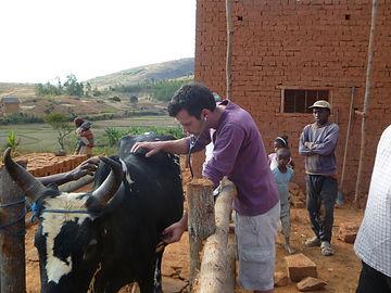 Jonathan de Patoul Madagascar vétérinaire