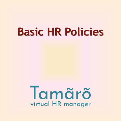 HR Policy Consultant Service