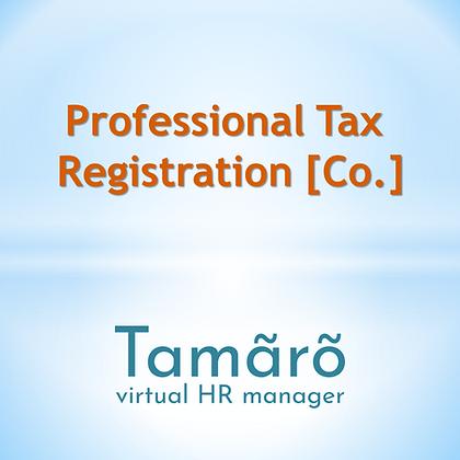 Professional Tax Consultant Service