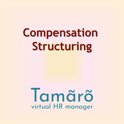 Salary and Compensation Structuring