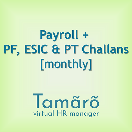 Payroll Outsourcing Service [Monthly]