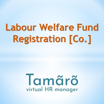 Labour Law Consultant Service