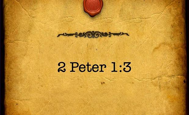 2_peter-Standard 4x3.jpg