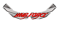 wings logo2 no background_edited.png