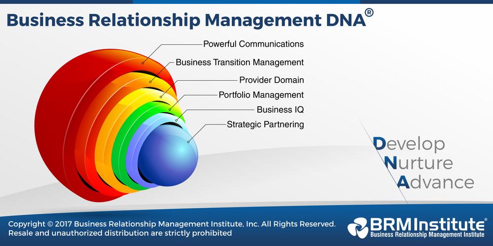 Business Relationship Management, BRM courses, BRMP, BRM Competencies