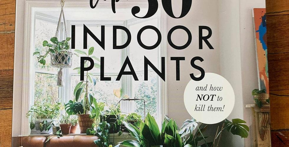 Top 50 Indoor Plant