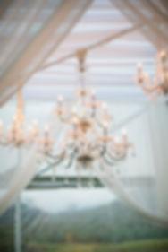 Arizona Wedding Planner & Event Services