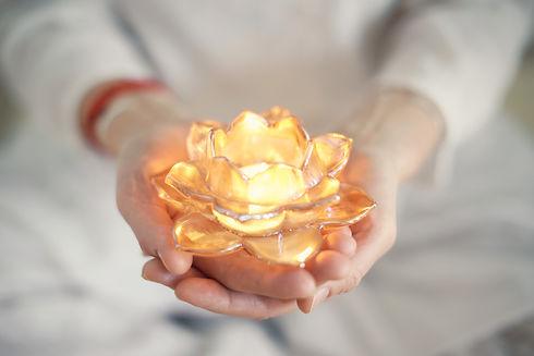 Anjali Lotus.jpg