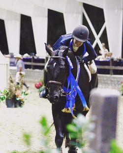 Hunters, Jumpers and Equitation