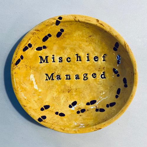Mischief Managed Dish