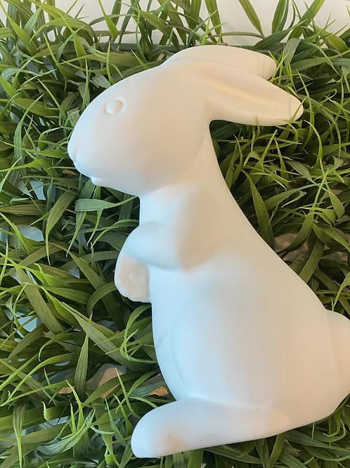 Sweet Bunny-SVM