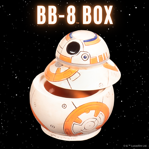BB-8 Box- Pines Rd