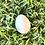 Thumbnail: Classic Egg-Kennewick