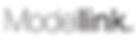 Modellink, Modellink Signe, Signe Nordstrom, Signe Agency