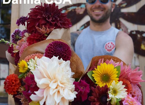 2021 Fall 4 Week Fall Dahlia Bouquet Subscription