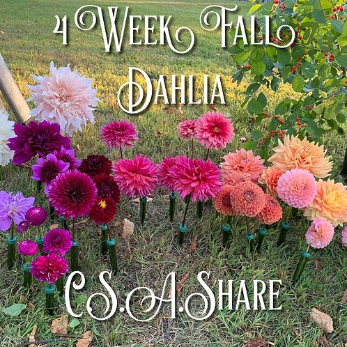 2020 Fall 4 Week Fall Dahlia C.S.A. Share