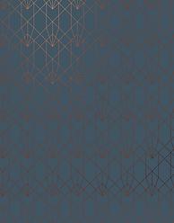 Pattern_1_CopperNavy_2700x3450_72dpi.png
