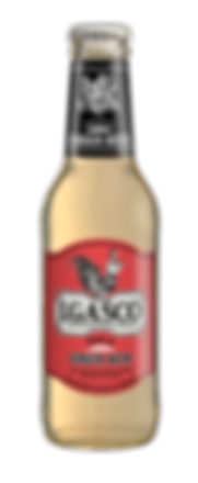 Ginger Beer EVIA.png