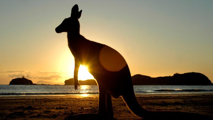 Australie055.jpg