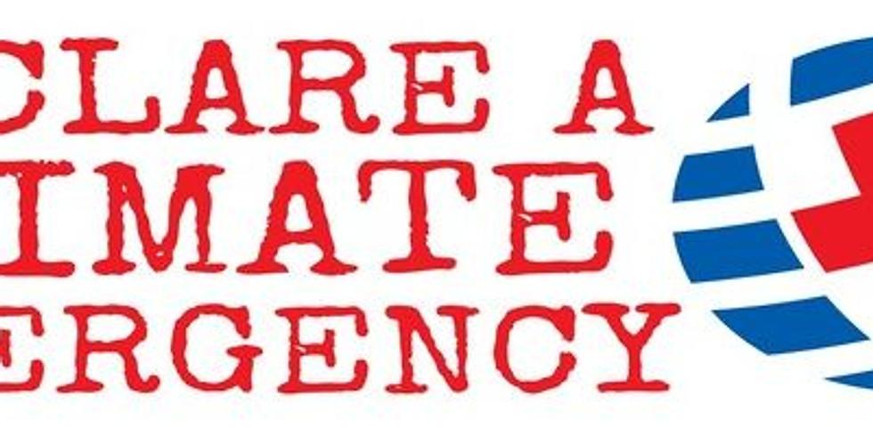 Climate Emergency UK - Online Conference - Taking Action Together