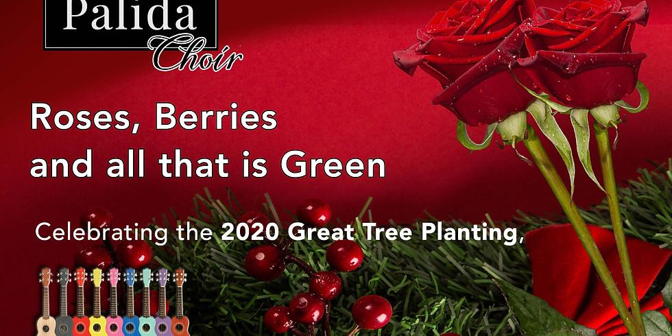 Palida Choir and the Shaftesbury Ukulele Band Christmas Songs and Winter Tree Poetry
