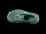 Beetle_bloom_shoes.png