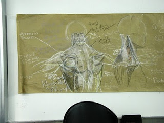 Lecture on the Upper Back