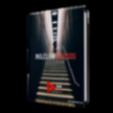 e-book 4 passos ivo dox capa.png