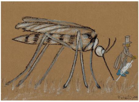 Auch im Oktober stechen die Mücken noch...