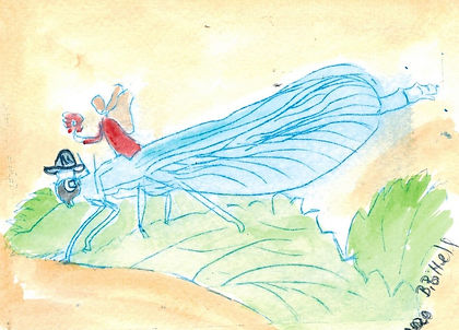 Libelle2.jpeg