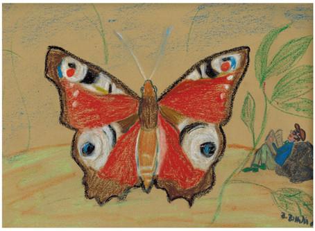 Dieser schöne Schmetterling flog mir dieser Tage entgegen