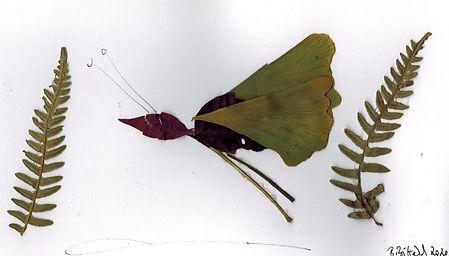 Blätterbild (2).jpeg