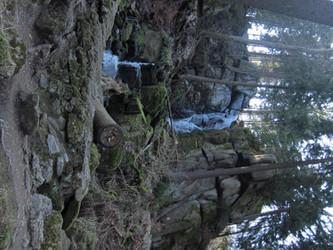 Wasserfall wildes Erzgebirge