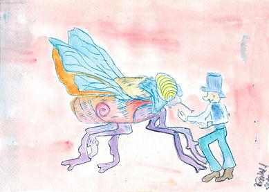 Fliege 2.jpeg