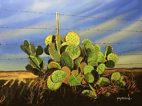"""LATE DAY CACTUS ON FENCE"""