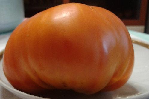 Большой мальчик (Big Boy Tomato)