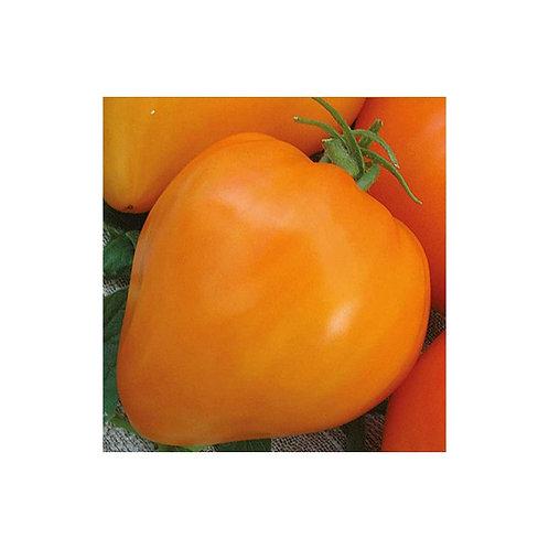 Лискин нос (оранжевое сердце)