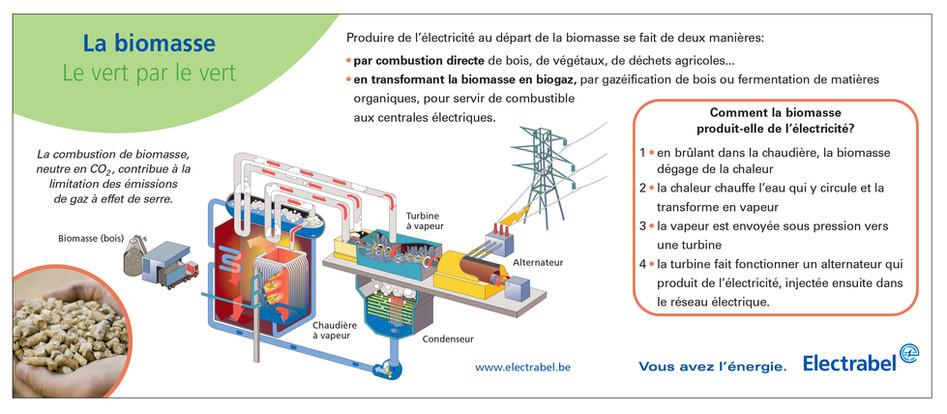Infographie biomasse