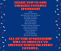 Payouts Sponsors 6_16.png